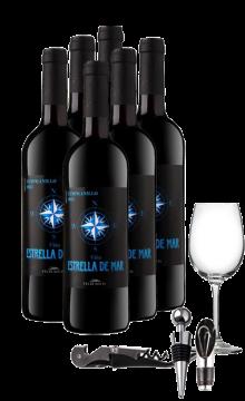 WSET新手必备红酒套装(海洋之心6支装+酒具配件组合)(FSA)